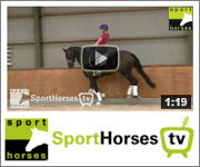 Sporthorses TV